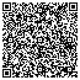 QR-код с контактной информацией организации Литвин, СПД