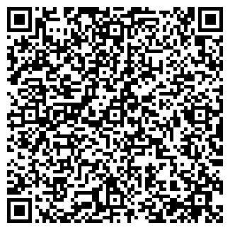 QR-код с контактной информацией организации Viptraffic, ООО