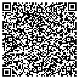 QR-код с контактной информацией организации Kamila, СПД