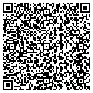 QR-код с контактной информацией организации Perevozcheg - Пассажирские перевозки