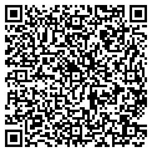 QR-код с контактной информацией организации Шибуми, ЧП