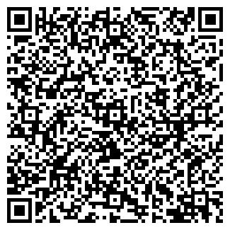 QR-код с контактной информацией организации Flaum-DIM (Флаум-Дим), ЧП