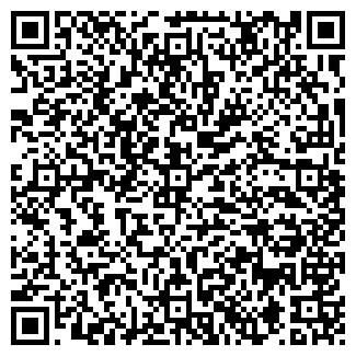 QR-код с контактной информацией организации Костанай IVT (АйВиТи), ТОО