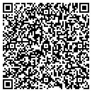 QR-код с контактной информацией организации Пулькач, ИП