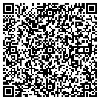 QR-код с контактной информацией организации Ринат, ИП