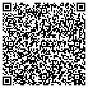 QR-код с контактной информацией организации Minibus (Минибус), ИП