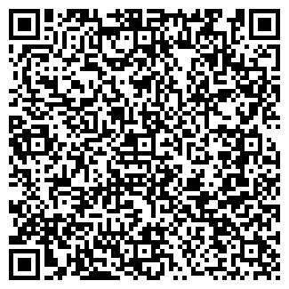 QR-код с контактной информацией организации Николай, ИП