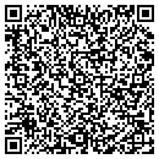 QR-код с контактной информацией организации Вивин, ОДО
