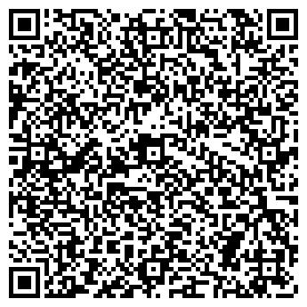 QR-код с контактной информацией организации Алтын Кеме, ИП