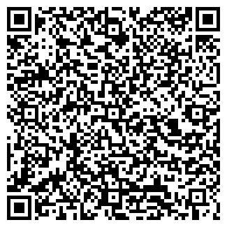 QR-код с контактной информацией организации Alem (Алем), ТОО
