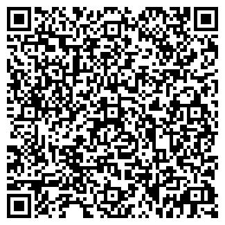 QR-код с контактной информацией организации Erish
