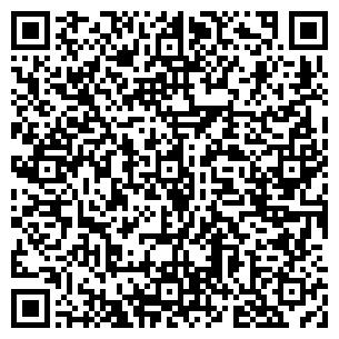 QR-код с контактной информацией организации Метиз, ТОО