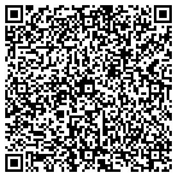 QR-код с контактной информацией организации Вади-Авто, ООО