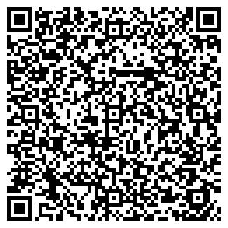 QR-код с контактной информацией организации IBS , ООО