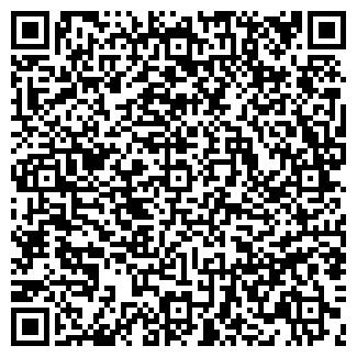 QR-код с контактной информацией организации Стальимпекс Групп, ООО