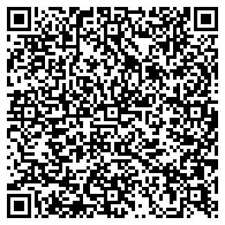 QR-код с контактной информацией организации Pnevmat, ЧП