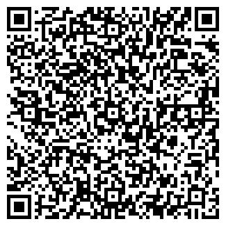 QR-код с контактной информацией организации Викст, ЧП