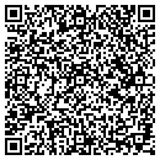 QR-код с контактной информацией организации Skat