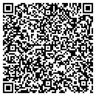 QR-код с контактной информацией организации Ствол, ЧП