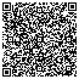 QR-код с контактной информацией организации Алька, ООО