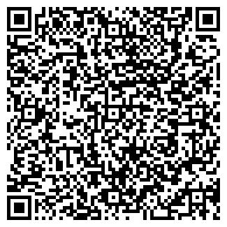 QR-код с контактной информацией организации Кизмет, ООО