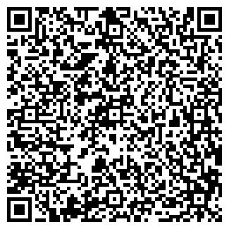 QR-код с контактной информацией организации Кырнис Александр Анатольевич, СПД