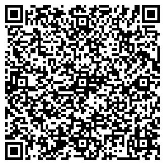 QR-код с контактной информацией организации Промлит Завод, ООО