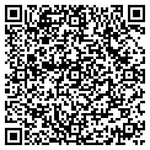 QR-код с контактной информацией организации Дубенко, ЧП