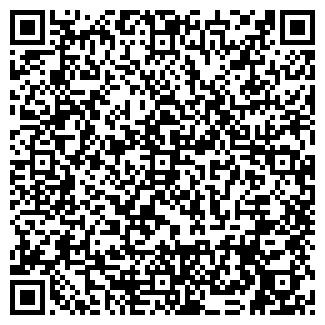 QR-код с контактной информацией организации Частное предприятие SHINA-LIFE
