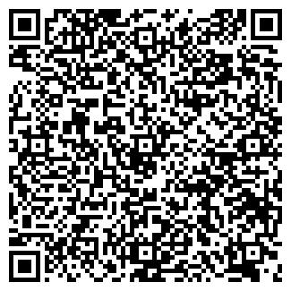 QR-код с контактной информацией организации СЭФ, ООО