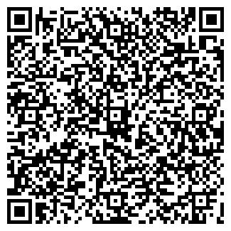 QR-код с контактной информацией организации АЛВИНИ