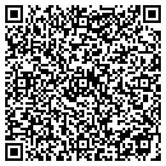 QR-код с контактной информацией организации НИКИТКИНСКАЯ ШКОЛА