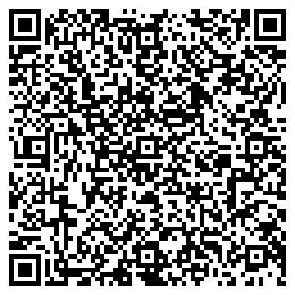 QR-код с контактной информацией организации ДИКСИ, ЗАО