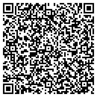 """QR-код с контактной информацией организации """"Панорама"""", ООО """"Руслан"""""""