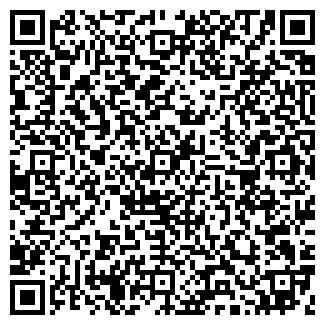 QR-код с контактной информацией организации ВАША ПИЦЦА