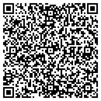 QR-код с контактной информацией организации ДЕТСКИЙ САД № 81