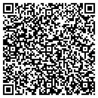 QR-код с контактной информацией организации CASTORAMA