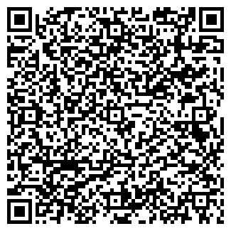 QR-код с контактной информацией организации СТРОЙЛЕССЕРВИС