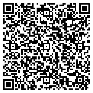 QR-код с контактной информацией организации ЛИЗА