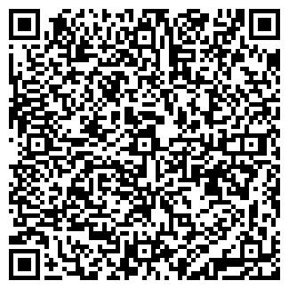 QR-код с контактной информацией организации RAYTRACE