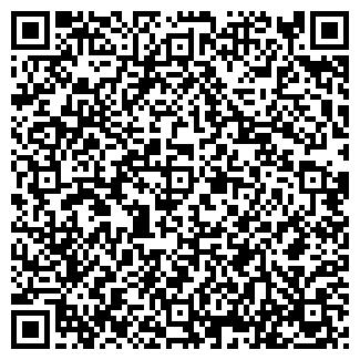QR-код с контактной информацией организации ИП МАЛАШЕВИЧ