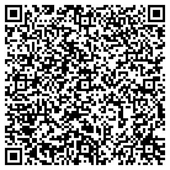 QR-код с контактной информацией организации ЕМЕЛЬЯНОВСКАЯ ШКОЛА