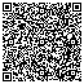 QR-код с контактной информацией организации INSY