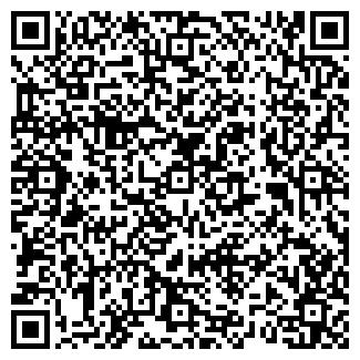 QR-код с контактной информацией организации OZ-WEB