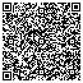 QR-код с контактной информацией организации DOMOLINK