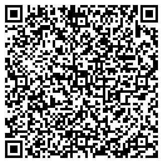 QR-код с контактной информацией организации ВИЗАРД, ЧП