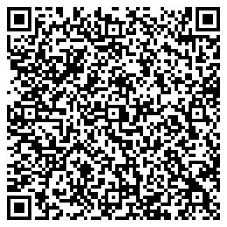 QR-код с контактной информацией организации CARSYSTEM, ЧП