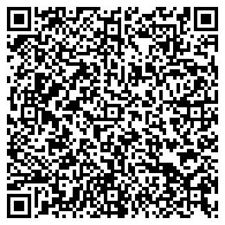 QR-код с контактной информацией организации ВИЗА-МОТОРС