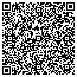 QR-код с контактной информацией организации ООО ГЕОСЕРВИС