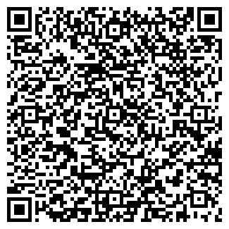 QR-код с контактной информацией организации ЖОЛБАЕВА ОСОО